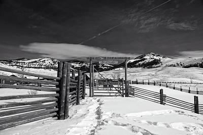 Wood Buffalo Photograph - Lamar Valley Buffalo Ranch by L O C