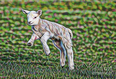 Lamb Mixed Media - Lamb Collection by Marvin Blaine