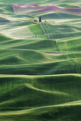 Photograph - Land Waves by Ryan Manuel