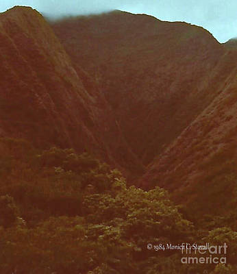 Photograph - Landscapes - Hawaii - Maui L22 by Monica C Stovall