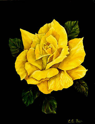 Painting - Large Yellow Rose by Charlotte Bacon