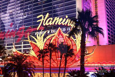 Photograph - Las Vegas Flamingo by John Rizzuto