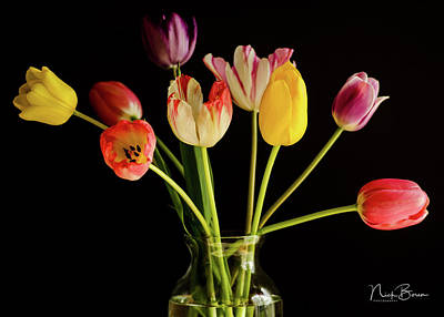 Photograph - Late Bloomers by Nick Boren