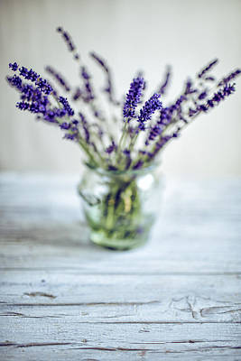 Still Life Photograph - Lavender Still Life by Nailia Schwarz