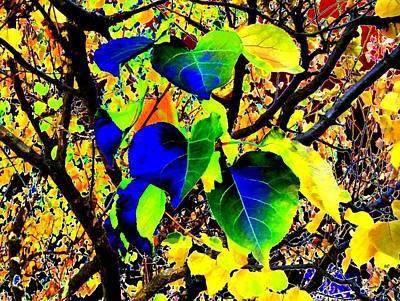 Digital Art - Lavish Leaves 1 by Will Borden