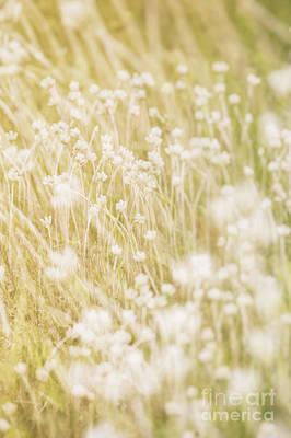 Photograph - Lazy Summer Days.. by Nina Stavlund