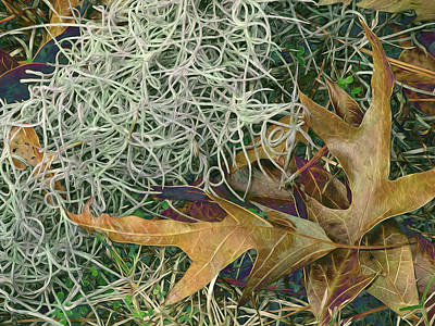 Digital Art - Leaves And Tendrils by Lynda Lehmann