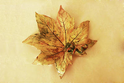 Photograph - Leaf Plate1 by Itzhak Richter