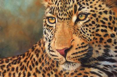 Painting - Leopard Portrait by David Stribbling