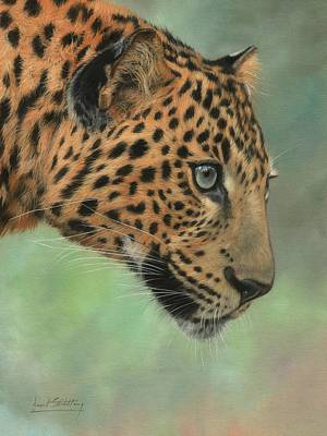 Painting - Leopard Profile by David Stribbling