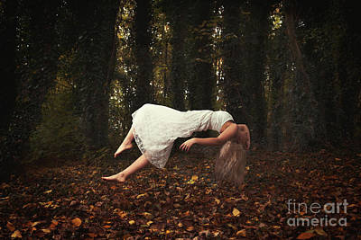 Country Lanes Photograph - Levitate by Amanda Elwell