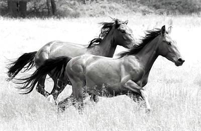 Photograph - Liberty Run by Athena Mckinzie