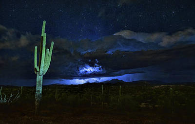 Photograph - Light Up The Night  by Saija Lehtonen