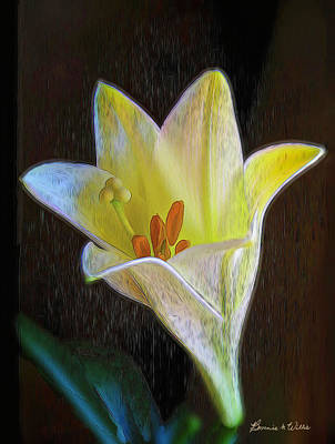 Digital Art - Lily by Bonnie Willis