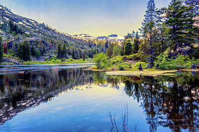 Photograph - Lily Lake by Maria Coulson