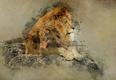 Digital Art - Lion On The Rocks by Jaroslaw Blaminsky