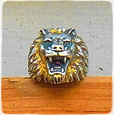 Popstar And Musician Paintings Royalty Free Images - Lion Ring Royalty-Free Image by Samuel Zylstra