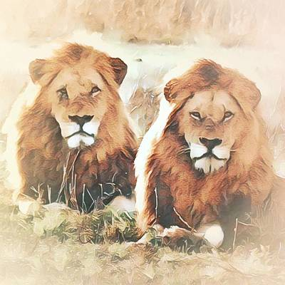 Photograph - Lions by Gini Moore