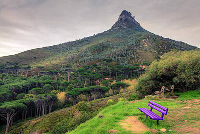Photograph - Lions Head Mountain by Alexey Stiop