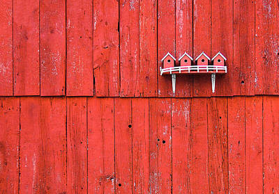 Photograph - Little Bird Houses by Todd Klassy