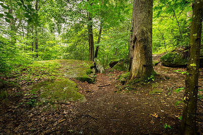 Virginia Photograph - Little Creek Park by Shane Holsclaw