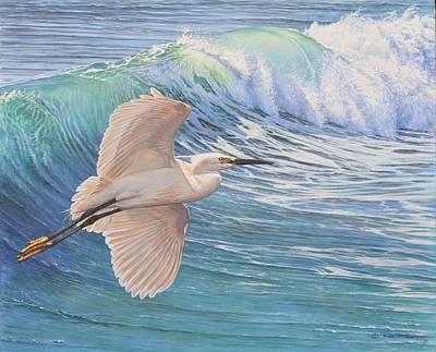 Painting - Little Egret by Alan M Hunt