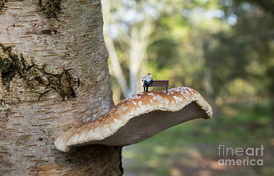 Photograph - Little Figure Man Reading Newspaper On  Fungus by Compuinfoto