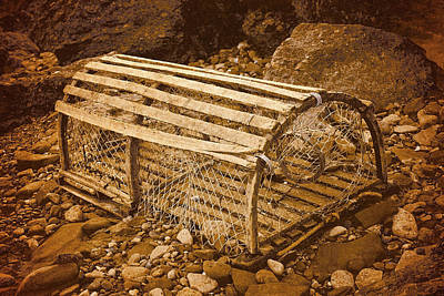 Photograph - Lobster Trap by WB Johnston