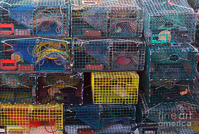 Lobster Traps Art Print by Linda Drown