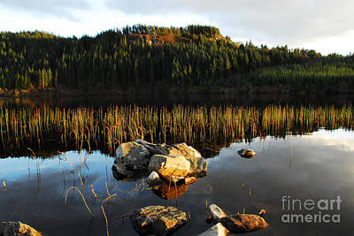 Scottish Highlands Wall Art - Photograph - Loch Lundie by Smart Aviation