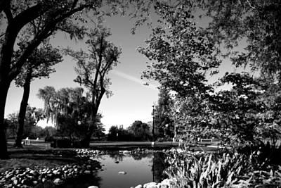 Photograph - Lodi Lake Autumn B And W by Joyce Dickens