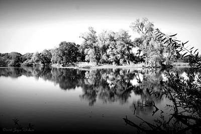 Photograph - Lodi Lake Autumn Reflections B And W by Joyce Dickens