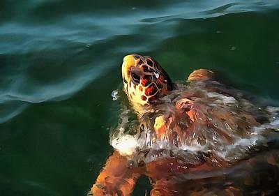 Painting - Loggerhead Turtle by Tracey Harrington-Simpson