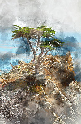 Lone Cypress In Monterey California Art Print by Brandon Bourdages