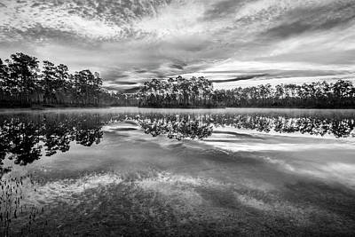 Florida House Photograph - Long Pine Bw by Jon Glaser