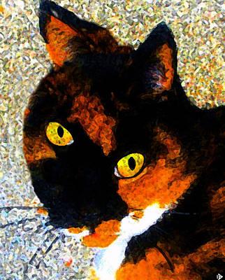 Looking Cat Art Print by David Lee Thompson