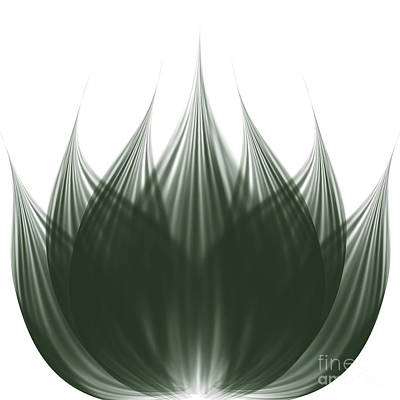 White Water Lilies Digital Art - Lotus Flower by Atiketta Sangasaeng
