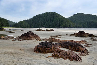 Photograph - Low Tide by Keith Boone