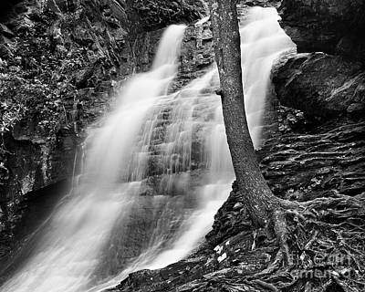 Photograph - Lower Cascade 2 by Patrick M Lynch