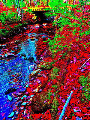 Photograph - Lower Childs Brook 30 by George Ramos