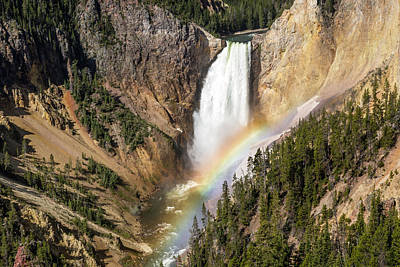 Photograph - Lower Yellowstone Falls by Jack Bell
