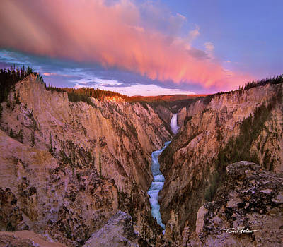 Photograph - Lower Yellowstone Falls by Tim Fitzharris