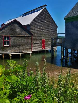 Photograph - Lubec by Lisa Dunn