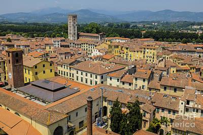 Photograph - Lucca Italy by Edward Fielding