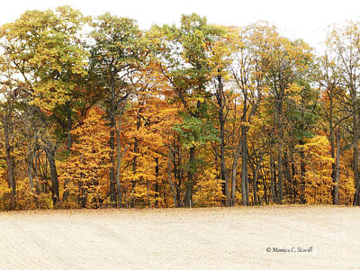 Photograph - M Landscapes Fall Collection No. Lf64 by Monica C Stovall