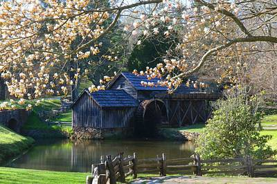 Photograph - Mabry Mill In Spring by Kathryn Meyer