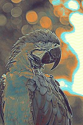 Amazon Parrot Painting - Macaw by Celestial Images