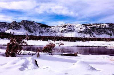 Photograph - Madison River - Yellowstone by L O C