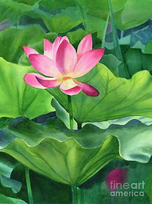 Magenta Lotus Blossom Original