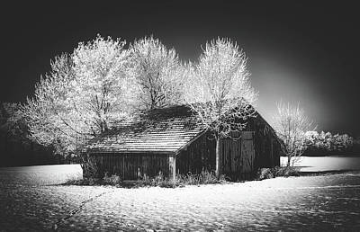 Photograph - Magical Hoarfrost Morning by Pixabay